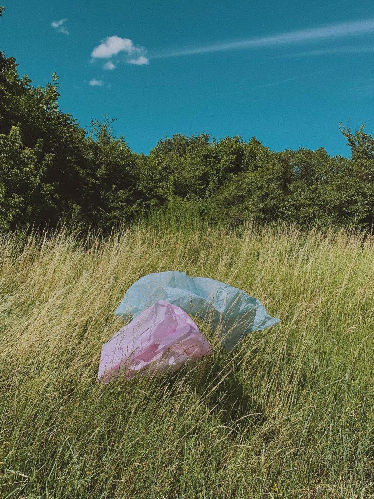 Bolsa plástica en el medio ambiente